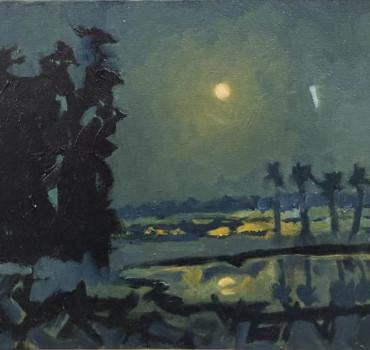 Moonlight Night II