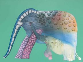 Elephant 2 | 36