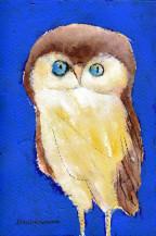 Owl | 7