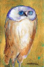 OWL I | 7