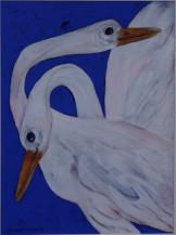 Swan  | 20
