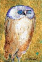 OWL I   7