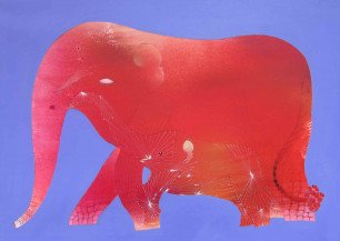 Elephant    36